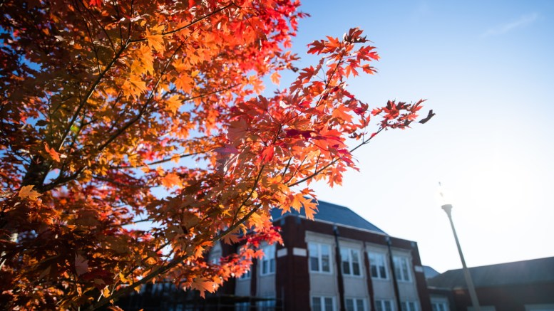 Correspondent Angelica Luna details a list of local fall festivities that the community can participate in. (Grace Cockrell/JSU)