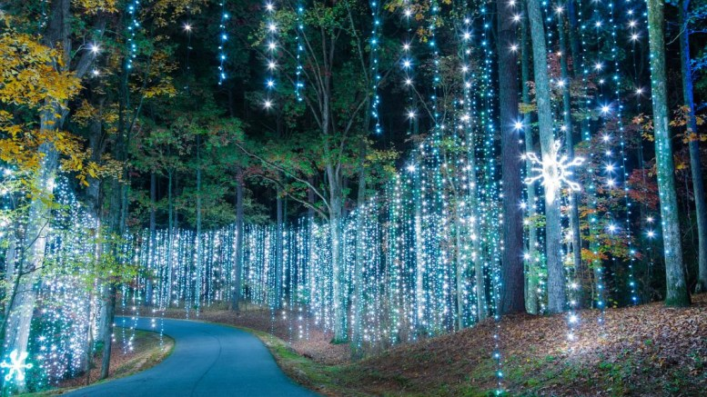 Callaway Gardens is located in Pine Mountain, Ga. and one of National Geographic's Top 10 light displays in the world. (Courtesy of Callaway Gardens)